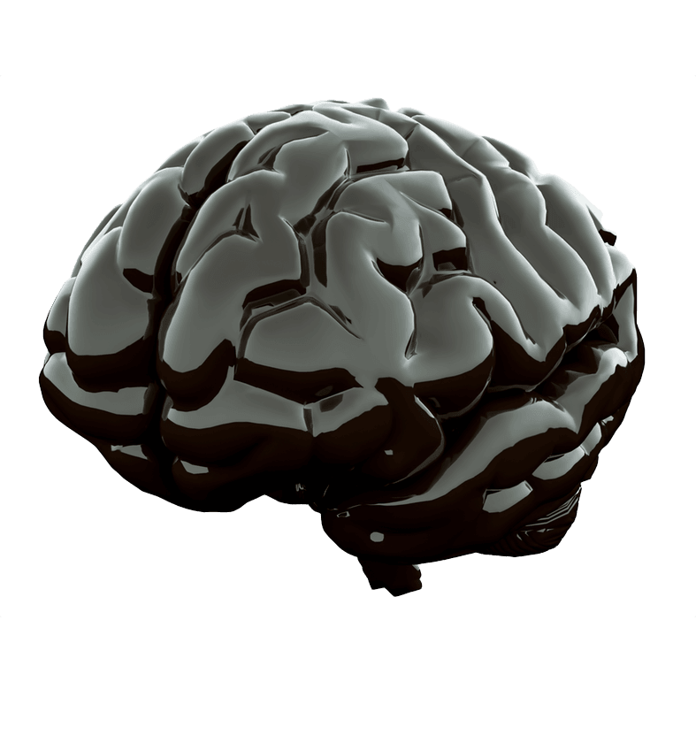home_sport_slide_1_brain-min